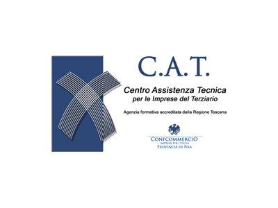 cat_musicastrada