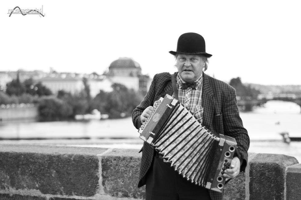 "Fabrizio Musu | ""fisarmonicista sul ponte carlo"""